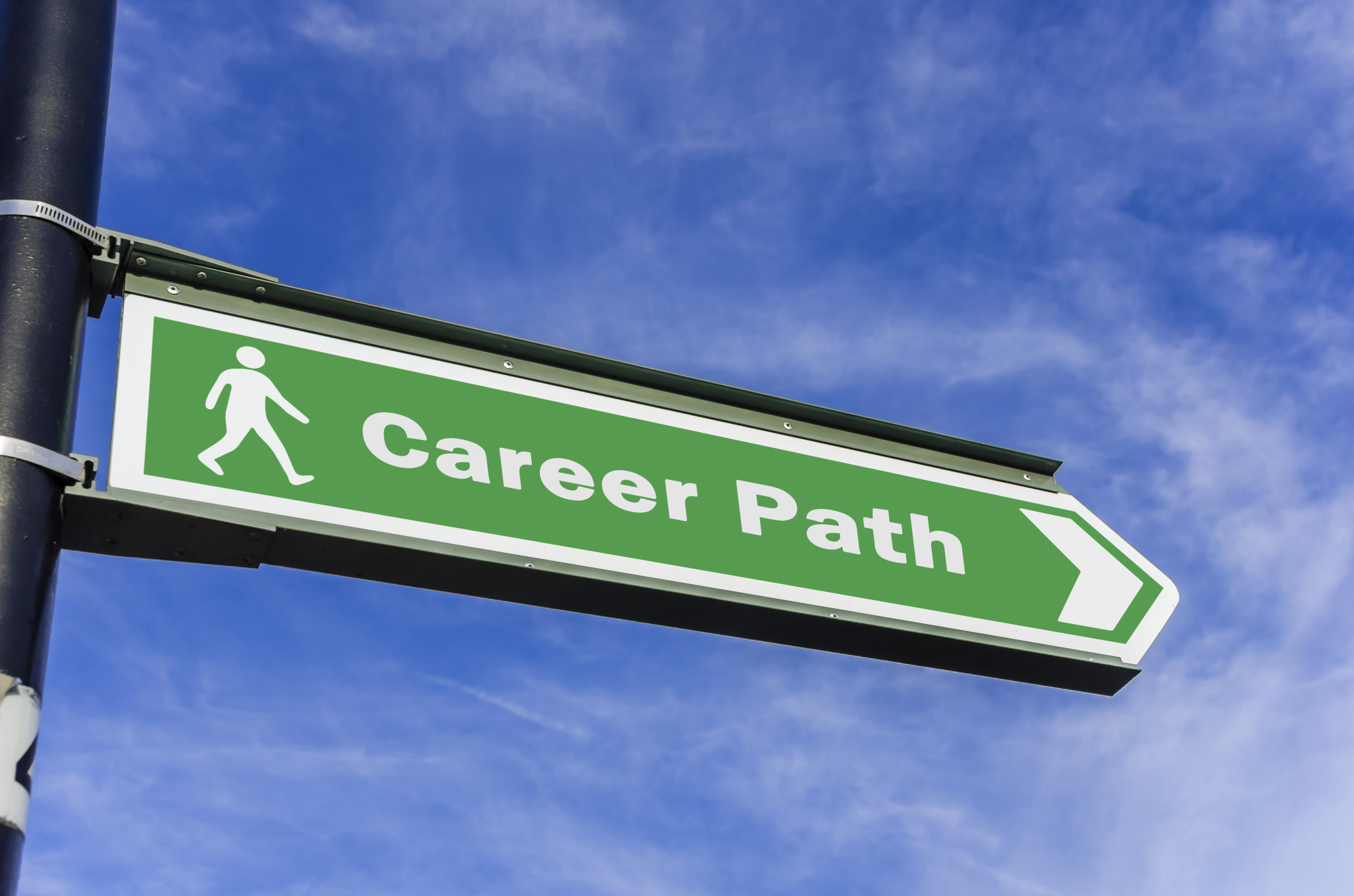 new career path