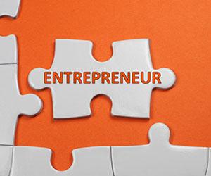 entrepreneur puzzle piece