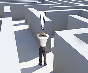lost in a job maze